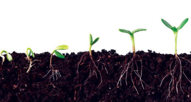 Creativity as a Spiritual Business Practice